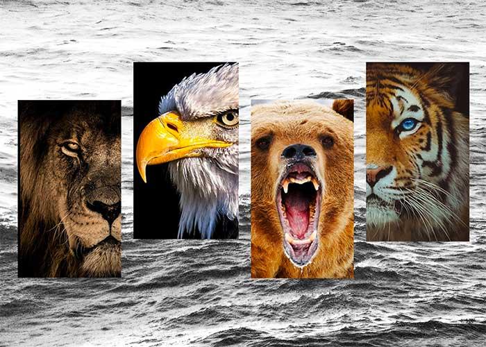animaux totem